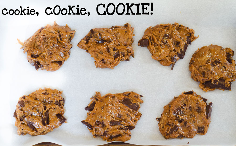 Giant Sunbutter & Chocolate Chunk Cookies | So....Let's Hang Out