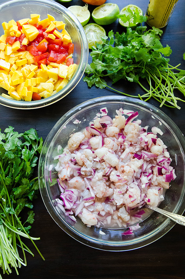 So…Let's Hang Out – Tropical Rock Shrimp Ceviche With Pineapple ...