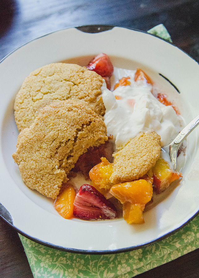 CookieShortcake-8193blog