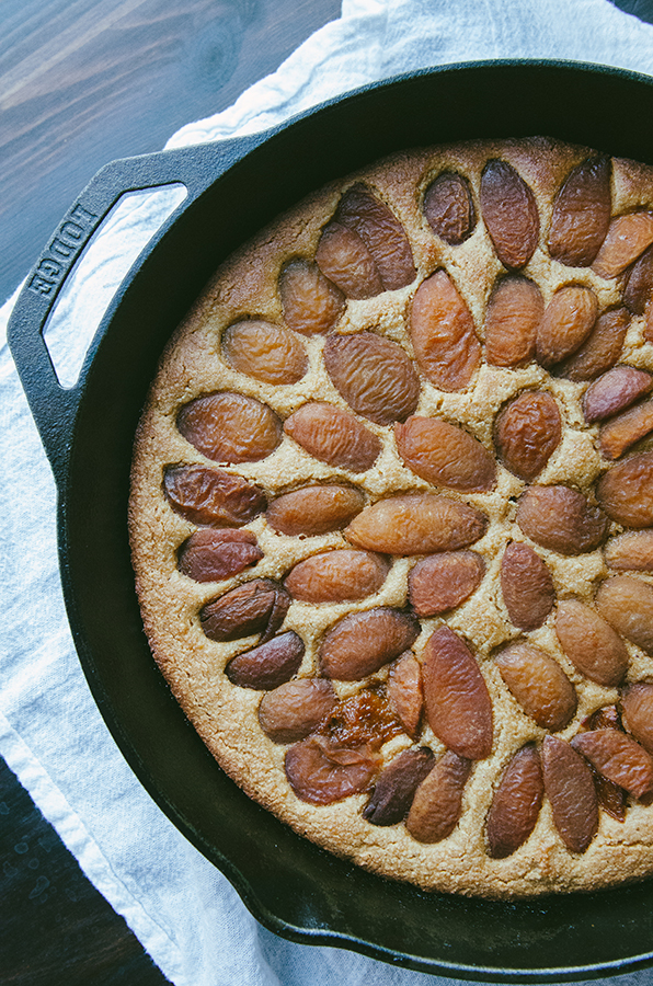 Grain-Free Lemon Apricot Yogurt Cake + How Social Media Makes Me Feel Like A Big Fat Failure// #grainfree #cake #apricot #lemon #paleo #primal #glutenfree